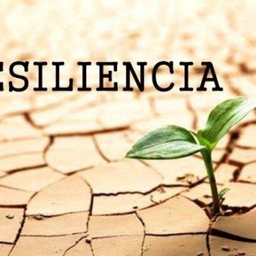 Operacionalización de la resiliencia del sistema alimentario
