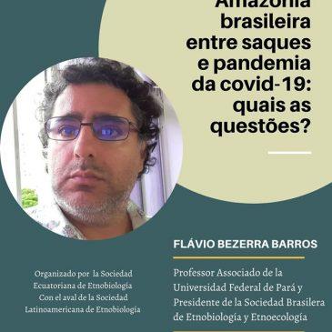 Amazonía Brasileira entre saques e pandemia da covid-19: quais as questoes